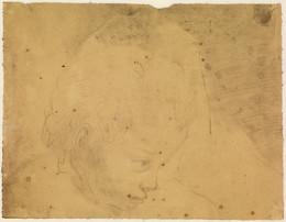 1906P695 Head of a Child